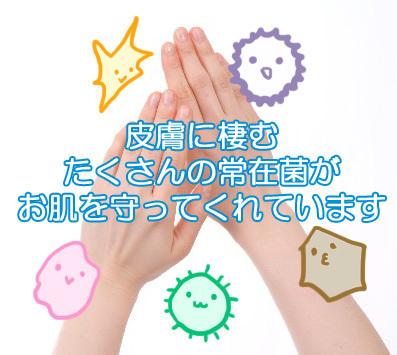 皮膚を守る常在菌