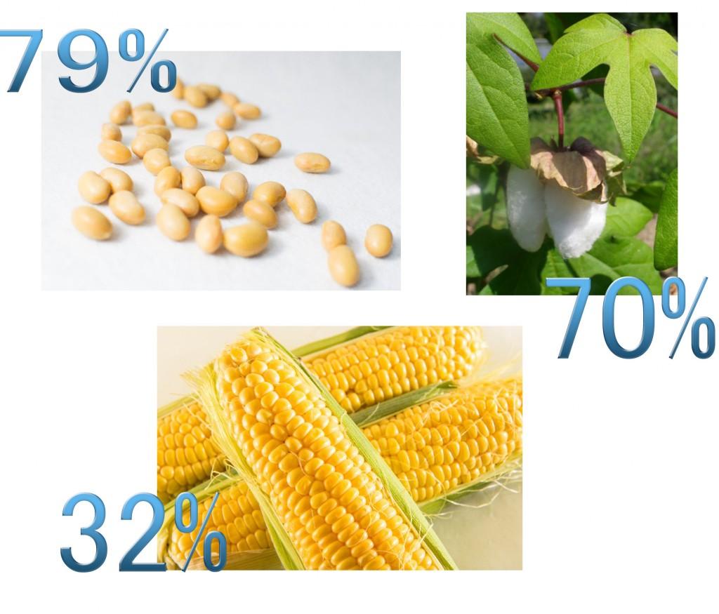 遺伝子組換えの割合