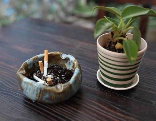 タバコは1本吸うだけでも常習性?添加した有害成分で依存確定
