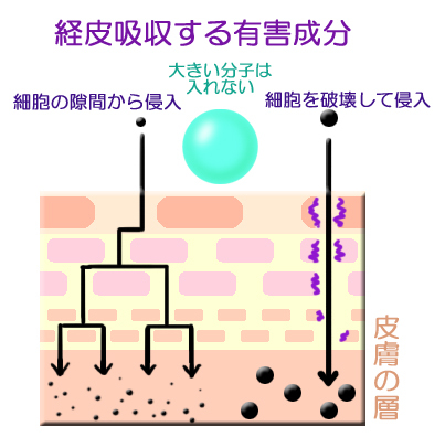 経皮吸収する有害成分