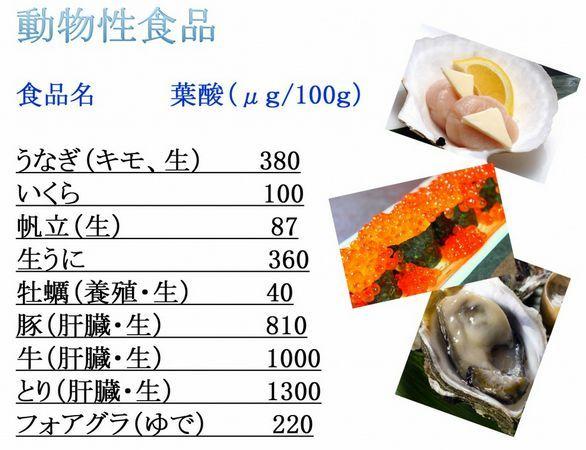 葉酸の多い動物性食品