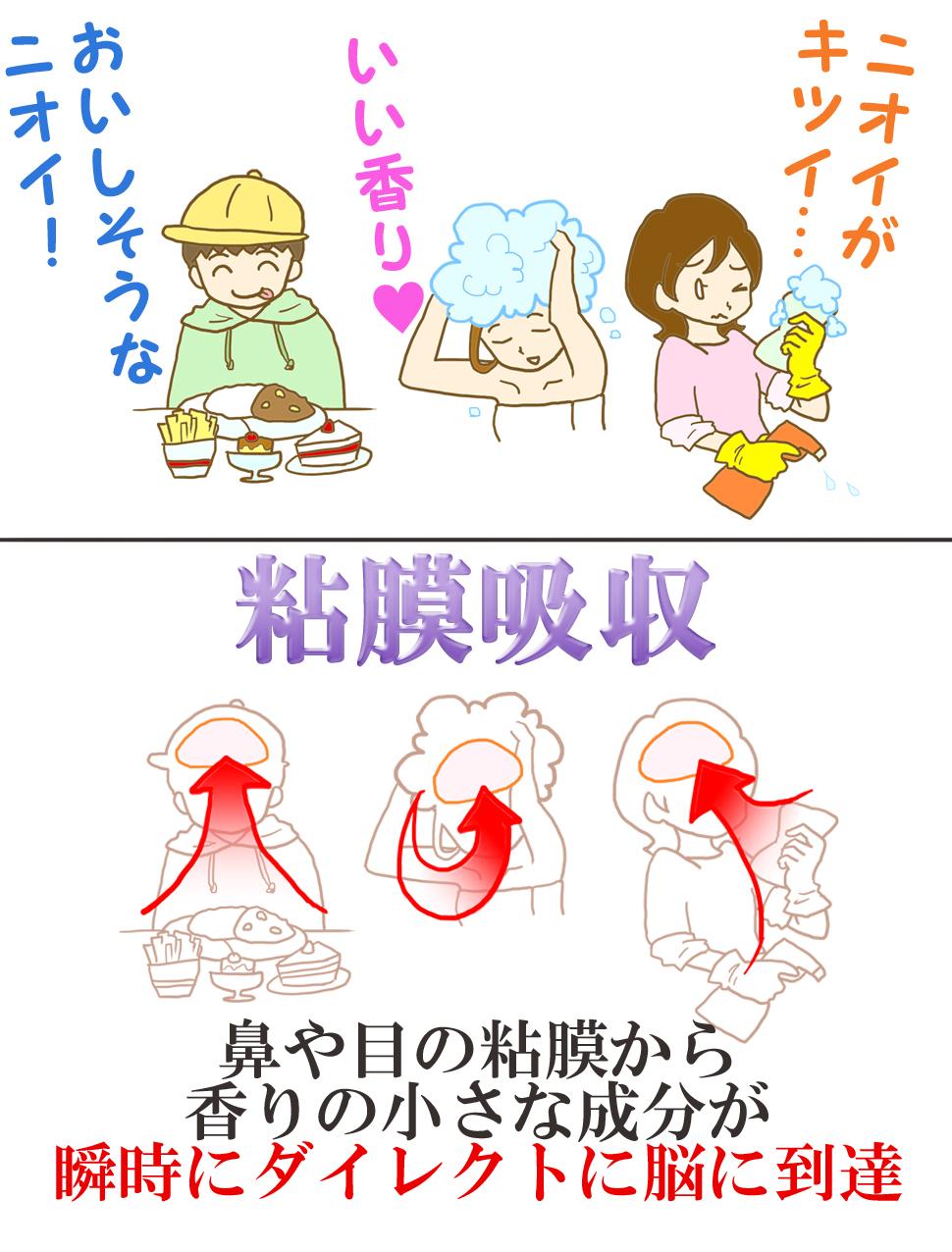 粘膜吸収 例