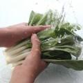 水洗いしている野菜