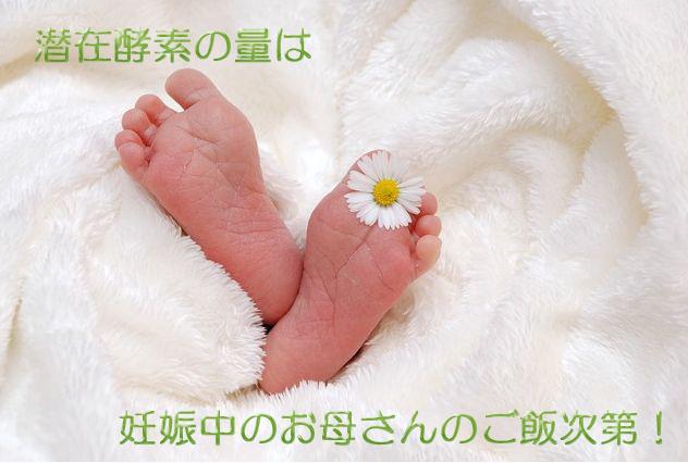潜在酵素は妊娠中に作られる