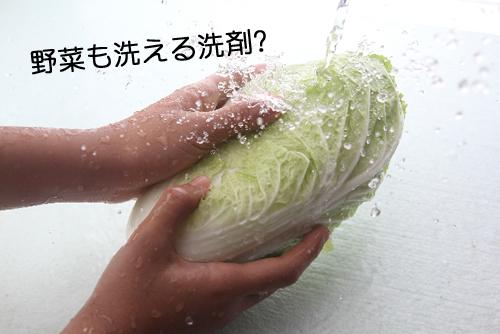 野菜 野菜も洗える洗剤?