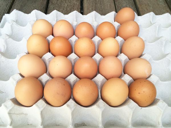 安全農産 卵