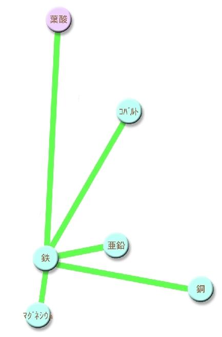 46必須栄養素 鉄 (2)
