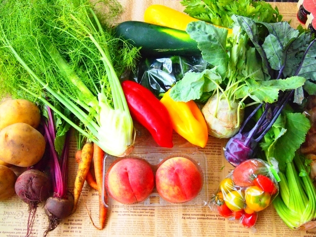 野菜が健康的とは限らない?硝酸態窒素(毒)の多い汚染野菜