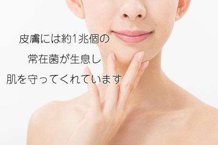 皮膚 肌 常在菌