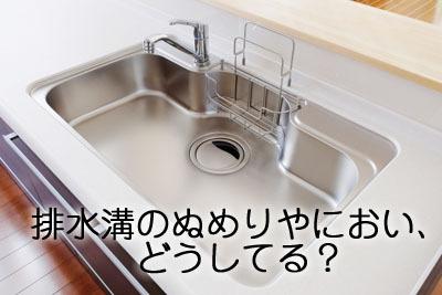 シンクのゴミ箱掃除が超簡単に!&ニオイも虫も寄せ付けないアイデア